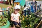 Фотомарафон детского сада в с.Онохино «Солнышко»