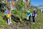 «Зеленая лаборатория» Луговского детского сада